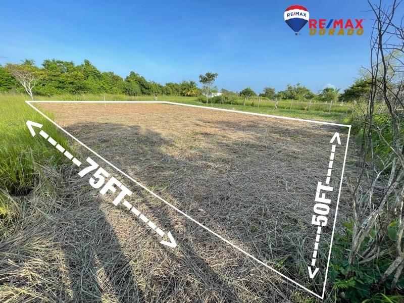 RE/MAX real estate, Belize, Belmopan, Residential Lot in Salvapan, Belmopan City
