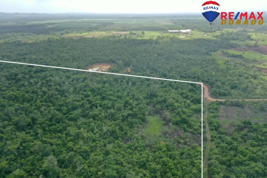 RE/MAX real estate, Belize, Cotton Tree, 50 acres in HarmonyVille, Cayo District, Belize