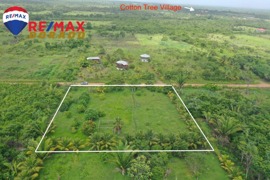 RE/MAX real estate, Belize, Cotton Tree, Property in HarmonyVille, Belize