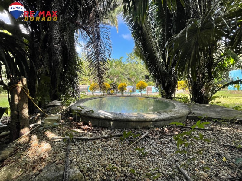RE/MAX real estate, Belize, Belmopan, Huge Property with establishment available!