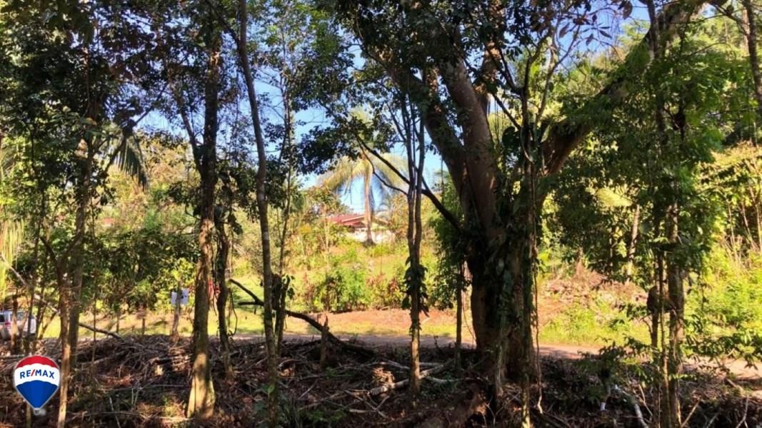 Remax real estate, Costa Rica, Esterillos, Villa Xihu lots for sale | $25 per m2 |Esterillos Oeste