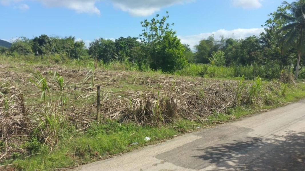 RE/MAX real estate, Jamaica, Montego Bay, TORADO HEIGHTS St. James Montego Bay