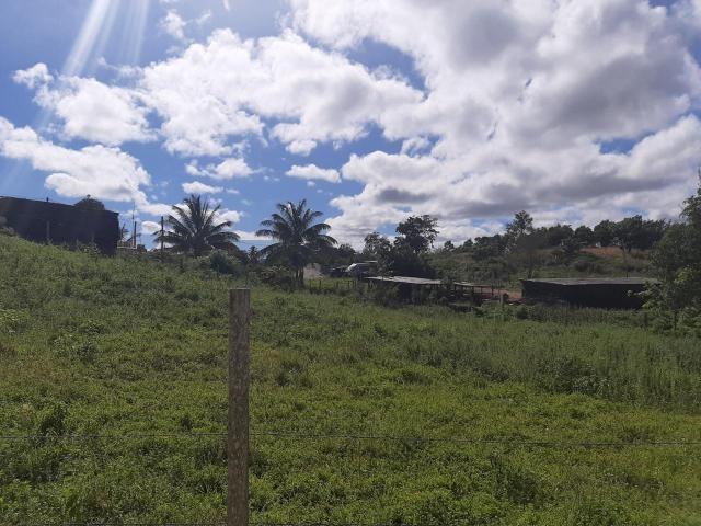 RE/MAX real estate, Jamaica, Browns Town, MINARD St. Ann Browns Town