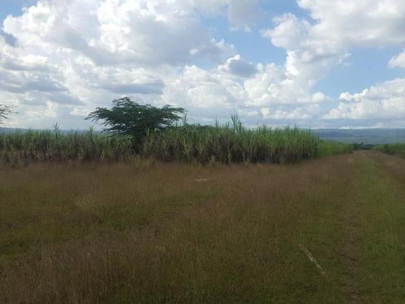 RE/MAX real estate, Jamaica, May Pen, FARM Clarendon May Pen