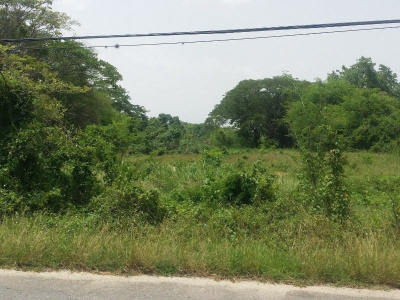 RE/MAX real estate, Jamaica, Middle Quarters, Lot 145 Luan Pen St. Elizabeth Middle Quarters