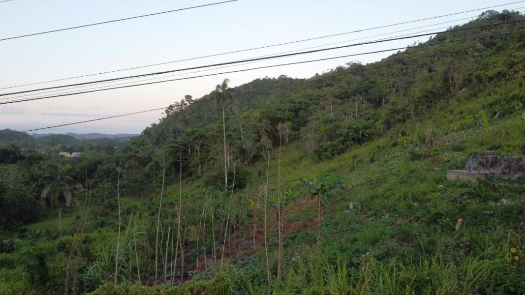 RE/MAX real estate, Jamaica, Ocho Rios, BEECHAMVILLE, CLAREMONT St. Ann Ocho Rios