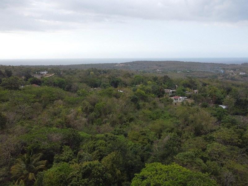 RE/MAX real estate, Jamaica, Duncans, Refuge Trelawny Duncans
