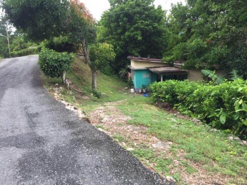RE/MAX real estate, Jamaica, Frankfield, Land Part Of Peckham Clarendon Frankfield