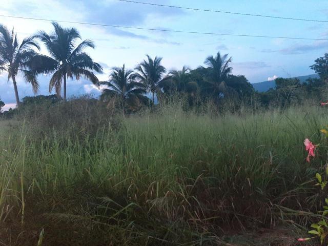 RE/MAX real estate, Jamaica, Nain, STEPHEN'S RUN, LITITZ St. Elizabeth Nain
