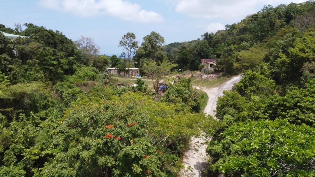 RE/MAX real estate, Jamaica, Runaway Bay, CARDIFF HALL PLANTATION St. Ann Runaway Bay