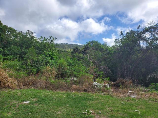 RE/MAX real estate, Jamaica, Montego Bay, HATFIELD, IRONSHORE St. James Montego Bay