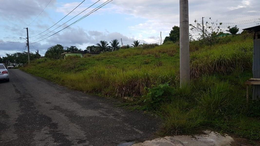 RE/MAX real estate, Jamaica, Ocho Rios, HERON PRESERVE EXCHANGE St. Ann Ocho Rios