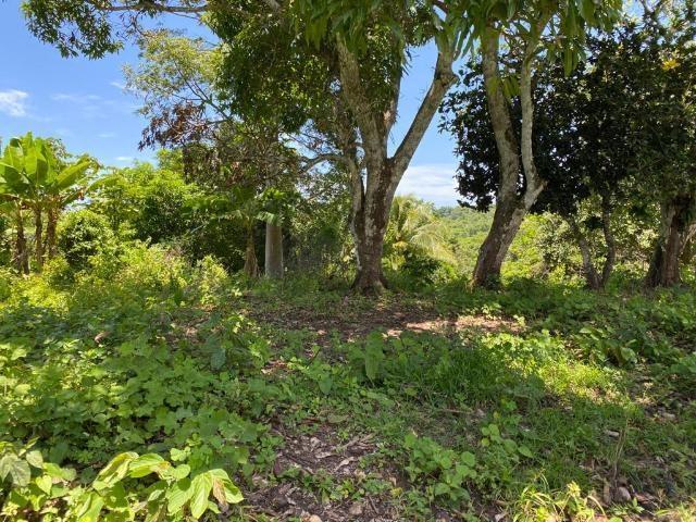 RE/MAX real estate, Jamaica, Montego Bay, BLENHEIM, HANOVER St. James Montego Bay