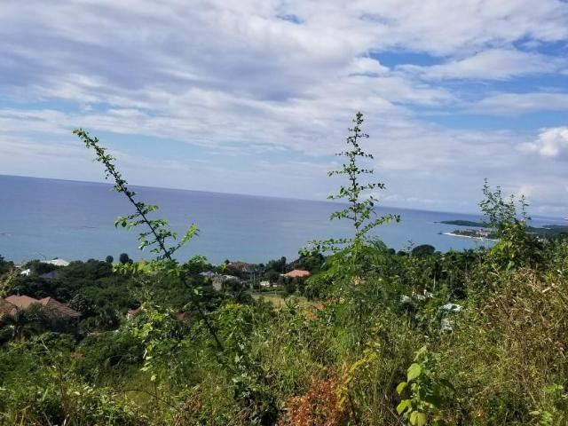 RE/MAX real estate, Jamaica, Bluefields, CULLODEN Westmoreland Bluefields