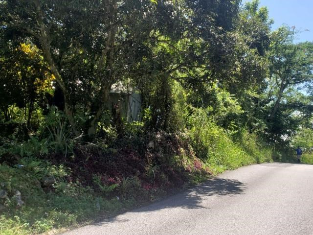 RE/MAX real estate, Jamaica, Bethel Town, BARNEYSIDE Westmoreland Bethel Town
