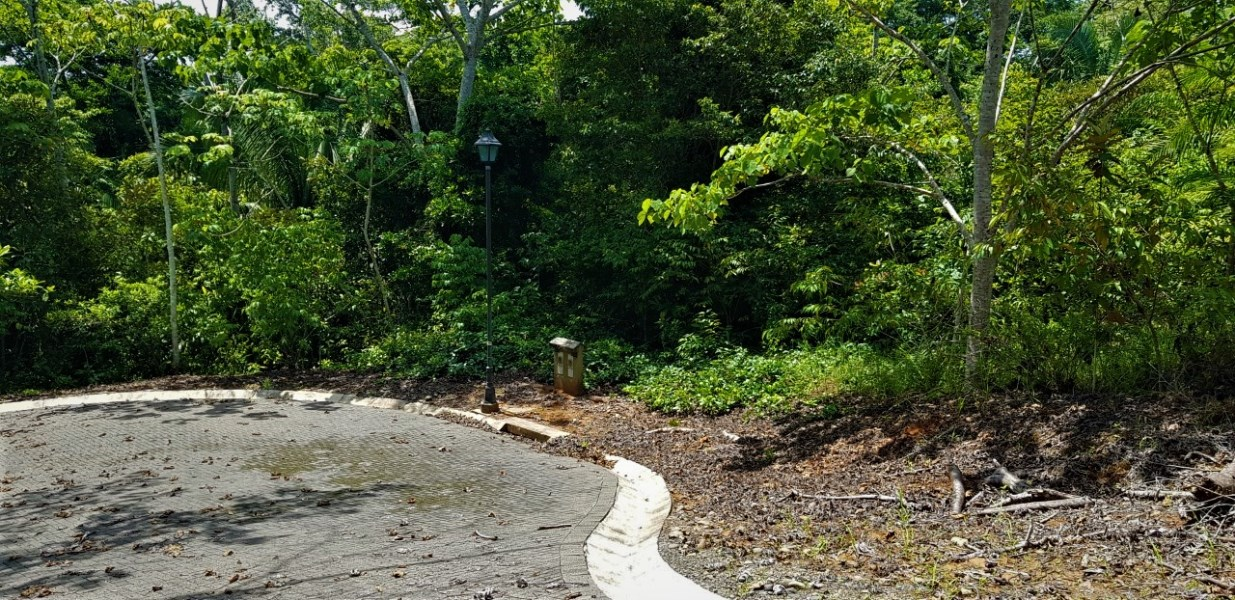 Remax real estate, Costa Rica, Esterillos, Estetillos Gated community 3 lots side by side ready to bulid