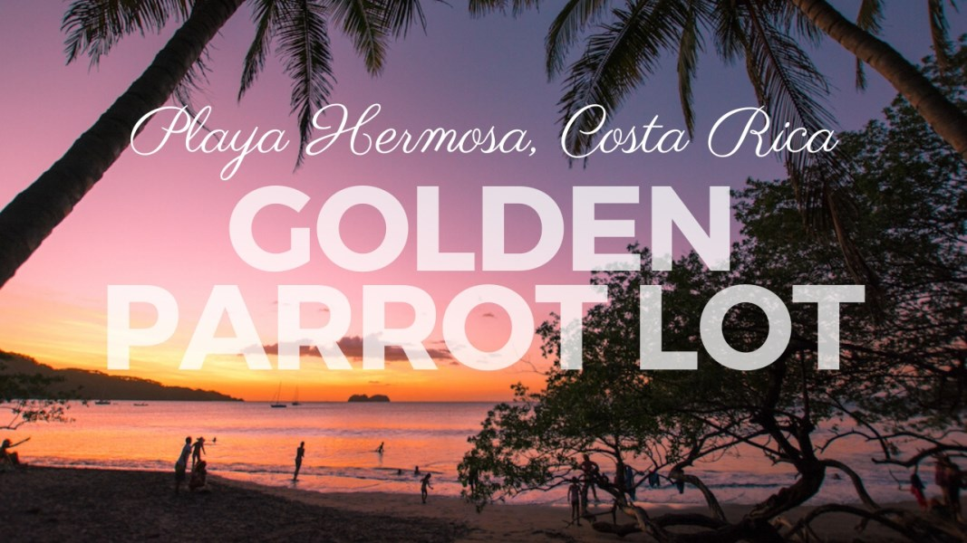 Remax real estate, Costa Rica, Playa Hermosa, Golden Parrot Lot