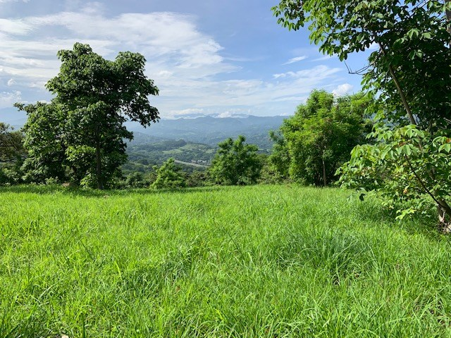Remax real estate, Costa Rica, Atenas, Extra large all buildable lots in private community of Atenas