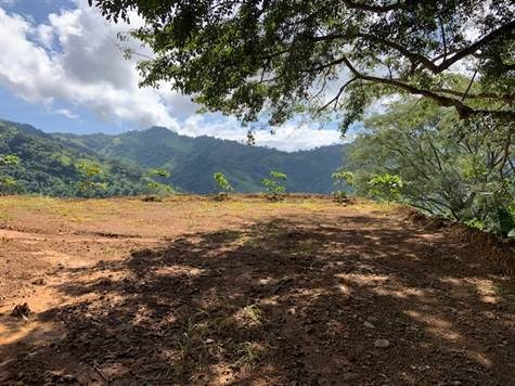 Remax real estate, Costa Rica, Atenas, 60,000m2 for agriculture with big views and LOTS of water