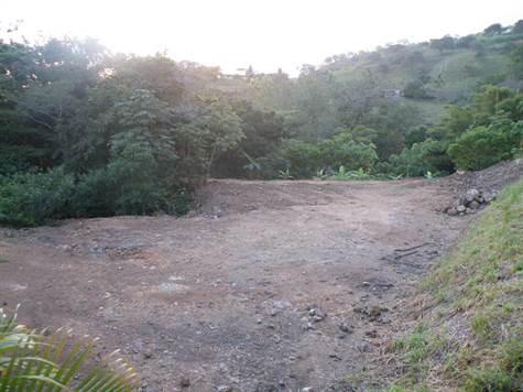Remax real estate, Costa Rica, Atenas-Escobal, 1760m2 in gated community Selva Rio Estates