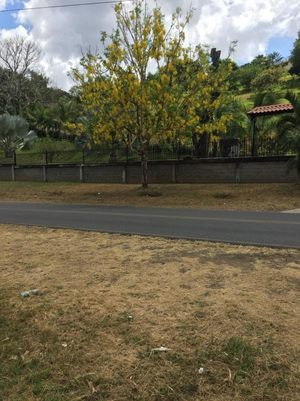 Remax real estate, Costa Rica, Atenas, lots for sale on main highway 3 mixed use residential/commercial