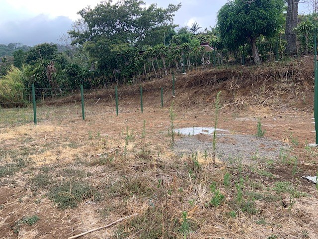 Remax real estate, Costa Rica, Atenas, Big Panoramic view lot at an affordable lot