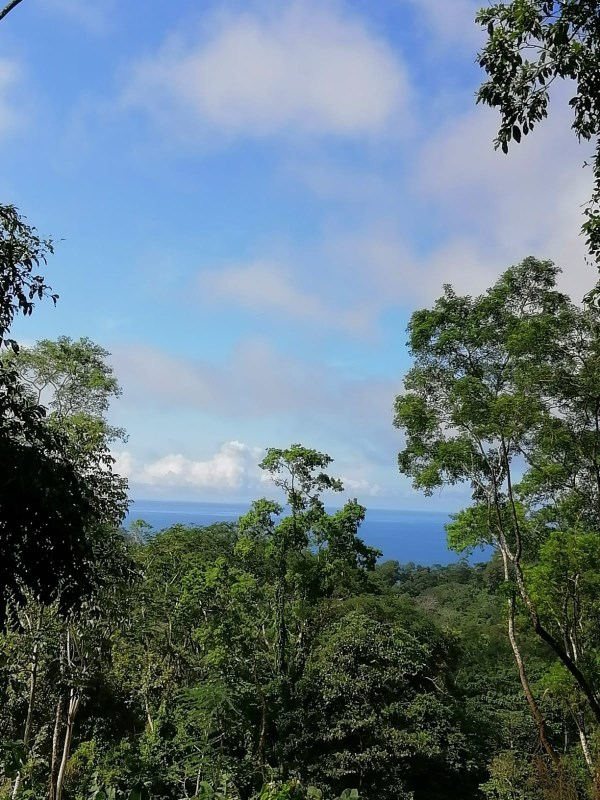 Remax real estate, Costa Rica, San Isidro, Lots Surrounded by Nature w/ Ocean View in an Excellent Location.