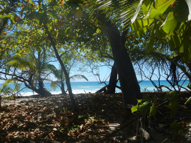 Remax real estate, Costa Rica, Santa Teresa, Beach Front Property Concession Approved