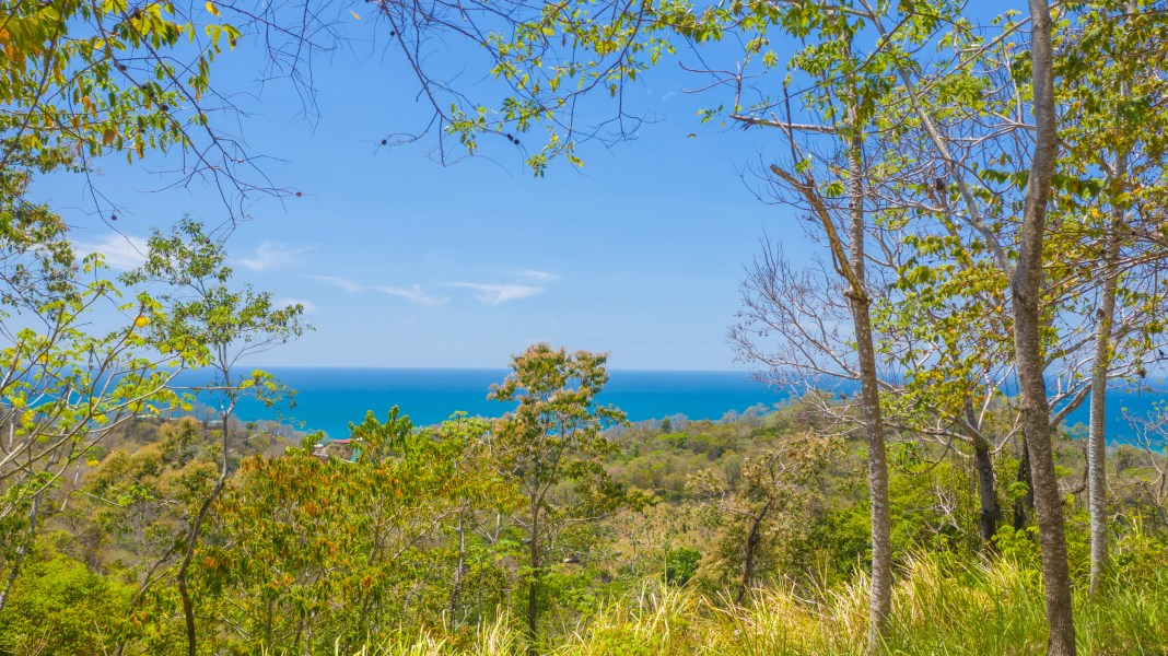 Remax real estate, Costa Rica, Santa Teresa, Sweeping Santa Teresa Ocean View Farm - Ready to Develop!