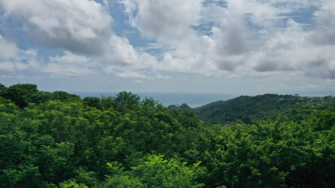 Remax real estate, Costa Rica, Santa Teresa, Santa Teresa Jungle & Partial Ocean View Lot