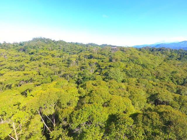 Remax real estate, Costa Rica, Uvita, FOR SALE by REMAX Last Mountaintop Land in the Uvita Area
