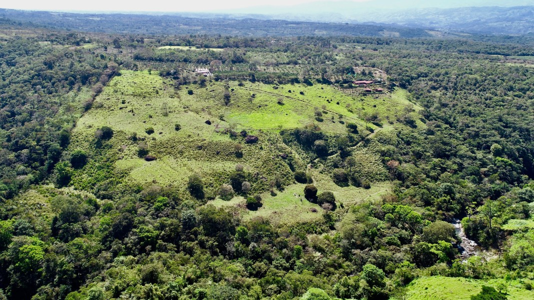 Remax real estate, Costa Rica, Buenos Aires, Finca Biolley - a 57 acre working organic permaculture farm. River with 3 waterfalls!