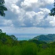 Remax real estate, Costa Rica, Dominical, OCEAN VIEW LOT FOR DEVELOPMENT, ESCALERAS!