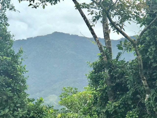 Remax real estate, Costa Rica, Ojochal, Beautiful Mountain View Property with Legal Water in the Village of Ojocha
