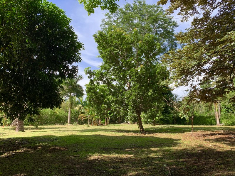 Remax real estate, Costa Rica, Uvita, Commercial & Residential Lot Make Your Living in CR