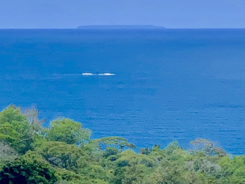 Remax real estate, Costa Rica, Dominical, Pristine Tropical Paradise in Escalares