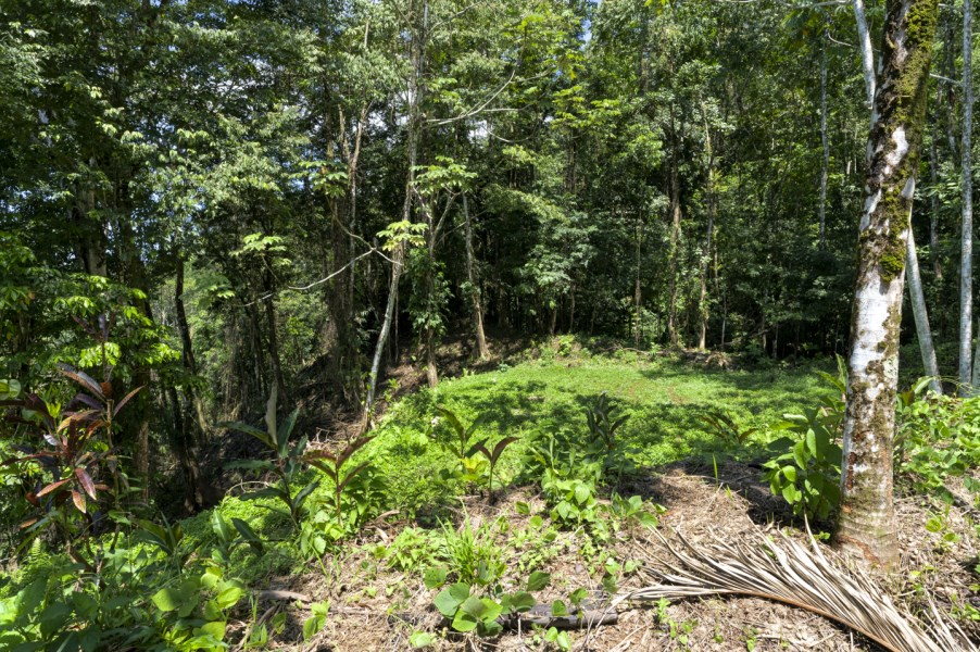 Remax real estate, Costa Rica, Uvita, Uvita Ocean View Lot with Easy Access and Legal Water.
