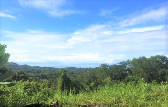 Remax real estate, Costa Rica, Ojochal, Gorgeous Ocean View Lot in the Hills Overlooking the Village of Ojochal!