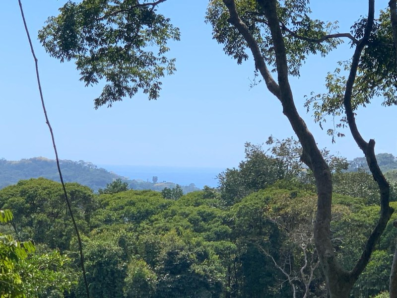Remax real estate, Costa Rica, Laguna, 4.2 ACRES – Private Acreage With Ocean And Mountian Views In Lagunas With Power And Legal Water