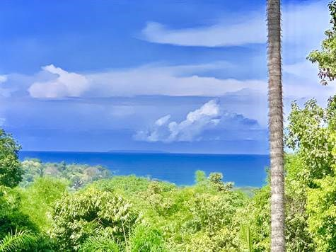 Remax real estate, Costa Rica, Uvita, Uvita: Ocean view 2 bedroom 2 bathroom house plus lots of land incl. waterfall for an excellent price!