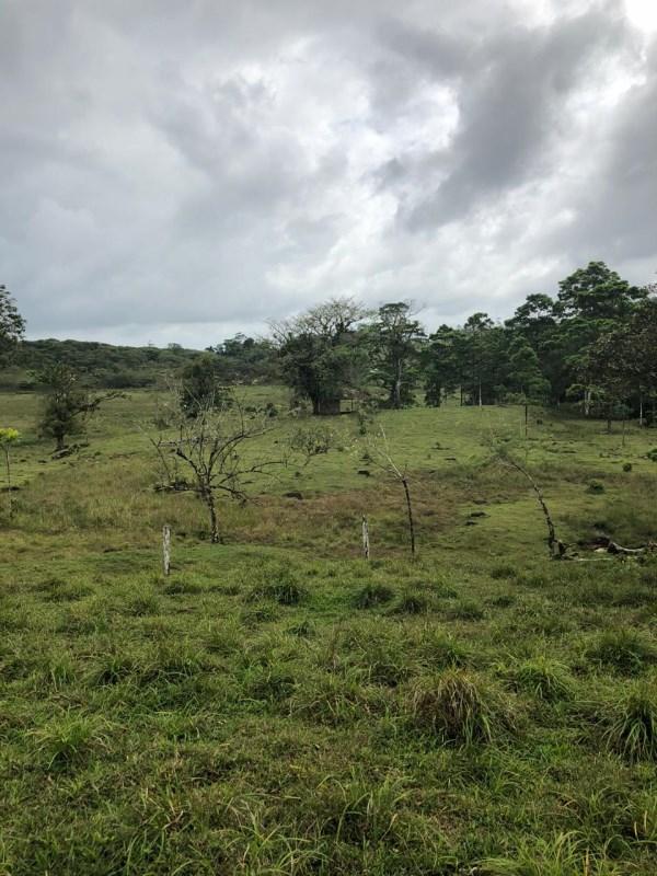Remax real estate, Costa Rica, Guatuso, For sale, property in Rio Celeste, Guatuso.
