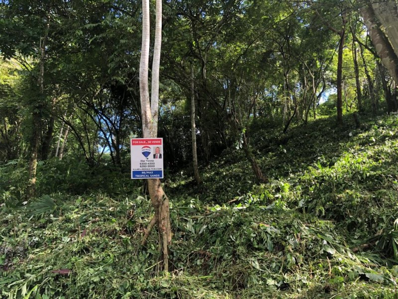 Remax real estate, Costa Rica, Manuel Antonio, Beautiful Jungle Lot located in Manuel Antonio Quepos, and close to shops and restaurants.