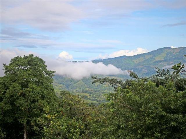 Remax real estate, Costa Rica, Pérez Zeledón-Barú - Platanillo, Perfect property for organic farm in Platanillo JJ