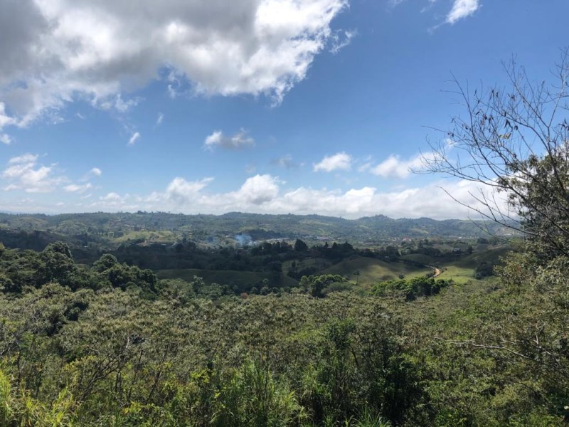 Remax real estate, Costa Rica, Agua Buena, For Sale Land in Santa Cecilia de Agua Buena Coto Brus. Good price !!