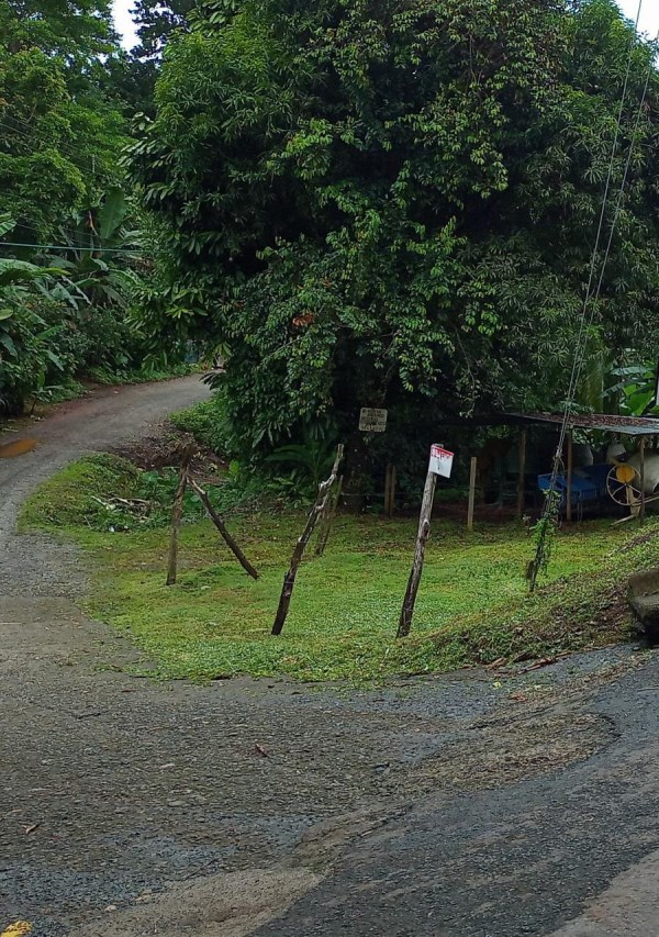 Remax real estate, Costa Rica, Quepos, LOT IN VILLA LIRIO ROAD