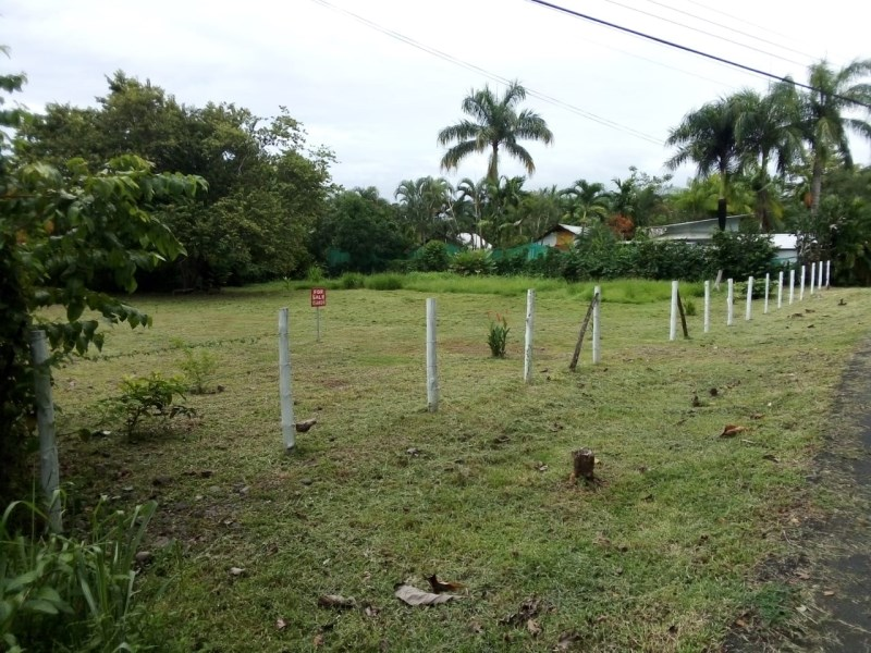 Remax real estate, Costa Rica, Dominical, Land for Sale near Ocean- Ready to Build