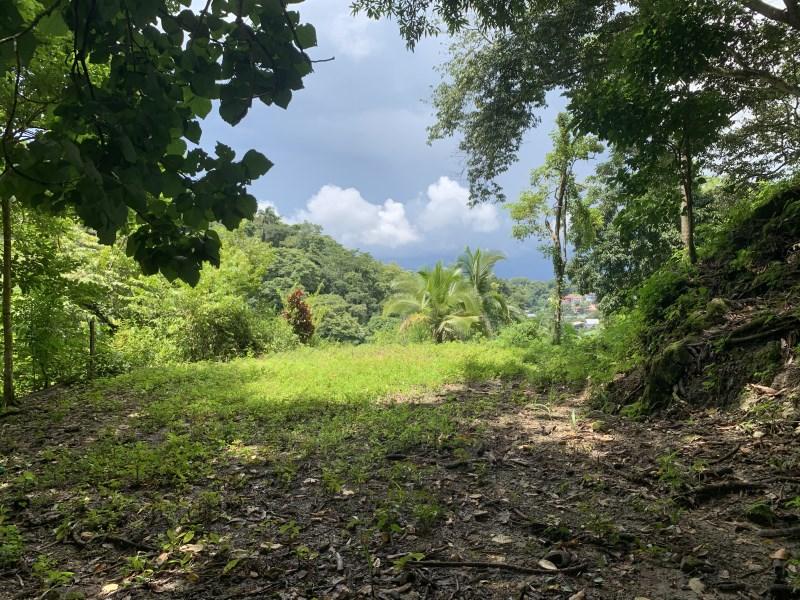 Remax real estate, Costa Rica, Quepos, Ready to Build Manuel Antonio Luxury Lot!