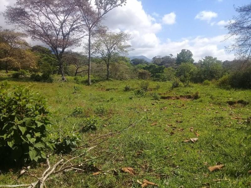 Remax real estate, Costa Rica, Pérez Zeledón-Barú - Platanillo, Finca Cristo Rey