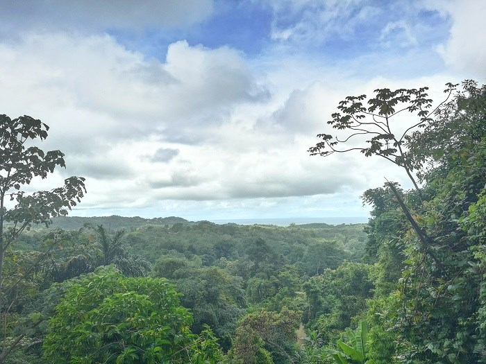 Remax real estate, Costa Rica, Ojochal, For sale Ocean view and water spring property in Ojochal. JJ