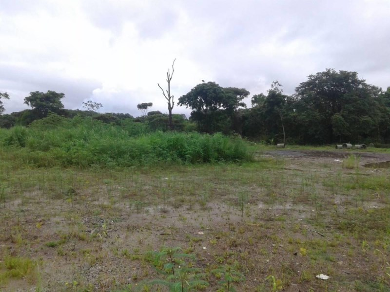 Remax real estate, Panama, Colon - Sabanitas, A2v - T - 0002 Land - Colon